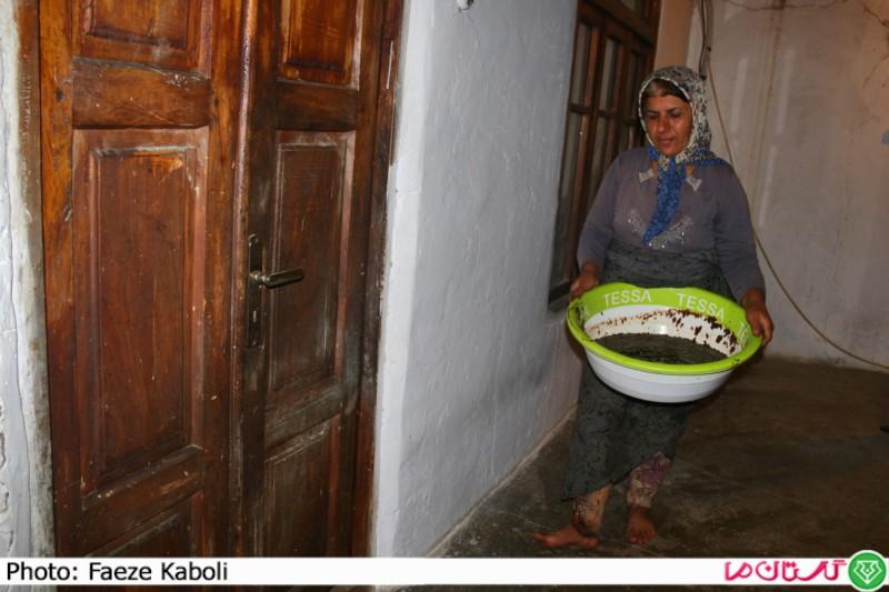 تهیه رب انار در گلستان17
