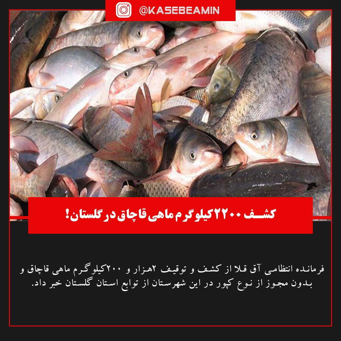 بی تدبیری دولت در گلستان تا اخراج نیرو ها4