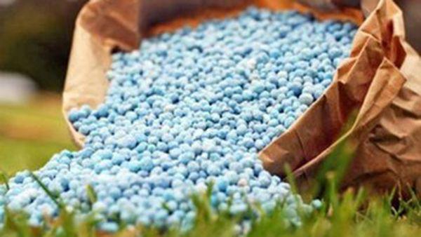 تامین کود سوپر فسفات برای کشت محصولات پائیزه گلستان