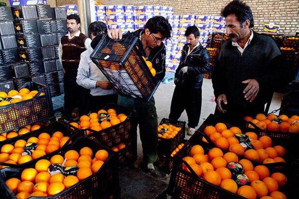 توزیع ۱۰۰۰ تن میوه شب عید در گلستان/ ۱۳۰ مرکز دائر شد