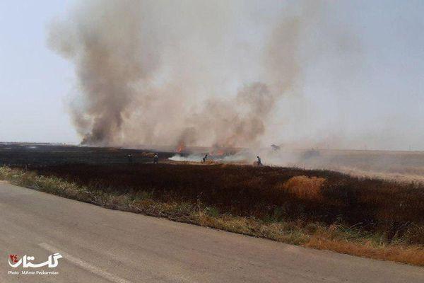 آتش سوزی در مزرعه نمونه شهر انبارالوم