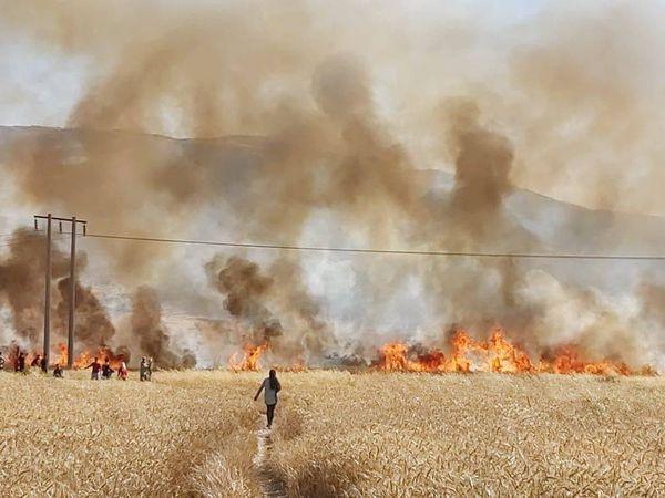 ۱۰ هکتار از گندم زارهای کلاله در آتش سوخت