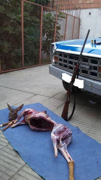 شکارچیان متخلف در گلستان  دستگیر شدند