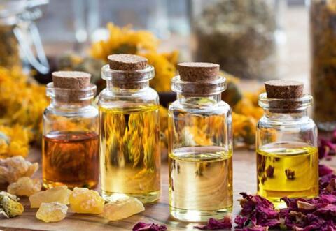 فیلم/ داروهای گیاهی تایید شده برای مقابله با کرونا