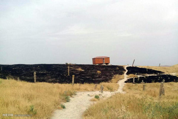 محوطه «خالد نبی» در آتش سهلانگاری سوخت/ مجموعه تعیین حریم میشود
