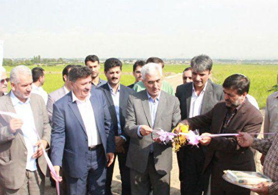 نوسازی اراضی شالیزاری گلستان