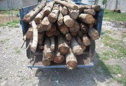 کشف و ضبط چوب آلات جنگلی در گرگان