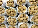 دست خالی کشاورزان گلستانی از کشت امسال سیب زمینی
