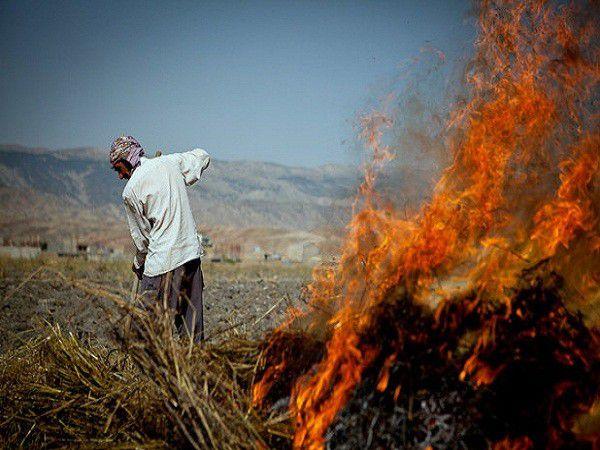 کشاورزان از آتش زدن بقایای محصولات خودداری کنند