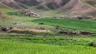 بازگشت ۴۷۰ هکتار از مراتع گنبد کاووس به منابع طبیعی پس از ۵۰ سال با پیگیری دستگاه قضایی