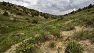۷۰ هکتار از عرصههای جنگلی و مرتعی گلستان به منابع طبیعی بازگشت