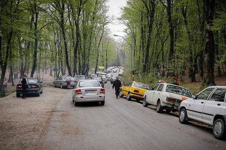 ایجاد زیر ساخت های  مناسب  در پارک های جنگلی به افزایش گردشگران در گلستان کمک میکند