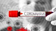 ویروس مشکلات معیشتی و بیکاری قوی تر از کرونا