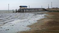 خلیج گرگان تا چهار سال آینده خشک خواهد شد