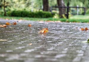 پیش بینی بارشهای خوب پاییزی برای استان