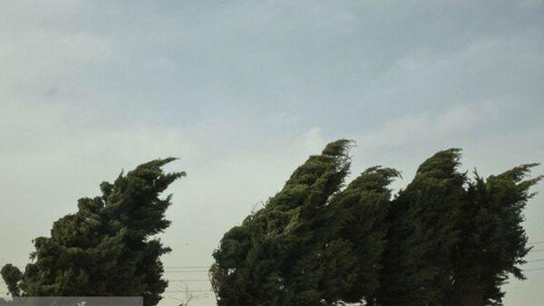 وزش باد نسبتا شدید در برخی نقاط گلستان