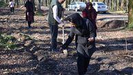 اجرای طرح ملی «جنگلانه» در پارک جنگلی امام رضا(ع) کردکوی
