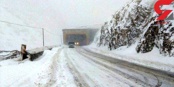 فیلم / بارش سنگین برف در جاده کرج چالوس