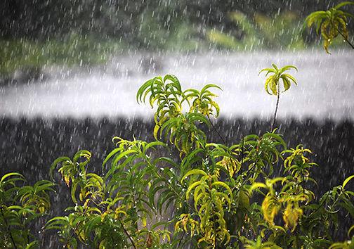 گلستان همچنان میزبان بارشهای تابستانه / کاهش ۸ درجهای دما
