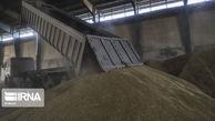 کشف ۷۰ تن گندم احتکاری در کلاله و چند خبر کوتاه از گلستان