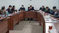 جلسه راهبردی جهش تولید کلزا در استان گلستان برگزار شد