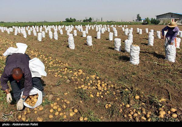 ایجاد صنایع بزرگ در گلستان کشاورزی را نابود میکند