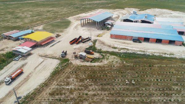 معادن صدف کوهی گلستان؛ ظرفیت بکر جهش تولید و ایجاد درآمد