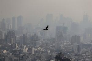 چگونه در برابر آلودگی هوا از خود محافظت کنیم؟