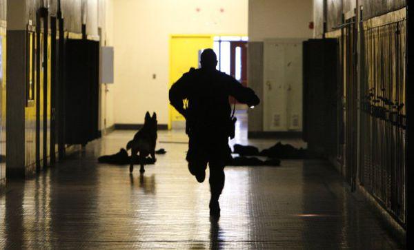 جرائم و خشونت در مدارس آمریکا در حال افزایش است