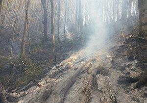 مهار آتش در عرصه های جنگلی کلاله