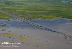 سیل به ۵۰ هزار هکتار از مزارع گندم و کلزای استان گلستان خسارت زد