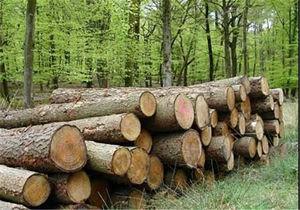 ﺩﺳﺘﮕﻴﺮی قاچاقچیان چوب ﺳﺮﺧﺪاﺭ در گرگان