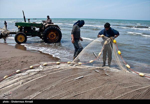 فصل صید ماهیان استخوانی از ۱۵ مهر در دریای خزر آغاز میشود
