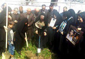 غرس نهال به یاد یک هزار و 610 مادر شهید استان گلستان