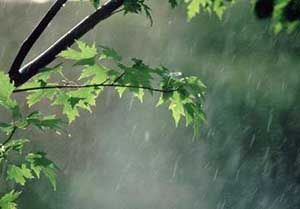 کاهش ۴ تا ۶ درجهای دما در گلستان / بارش پراکنده در نواحی کوهستانی