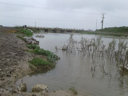 250 هزار هکتار زمین در گرگان زیر آب رفته است
