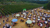 صدور نخستین پروانه بهره برداری گردشگری کشاورزی کشور در استان