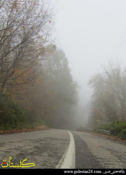 تصاویر زیبا از مناظر مه آلود در دل جنگل های گلستان شماره دو