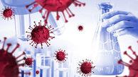 کروناویروس از طریق بزاق دهان هم منتقل می شود