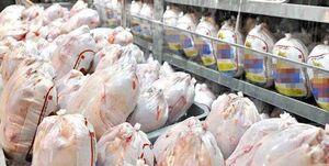 مصرف سرانه مرغ افزایش یافت