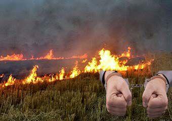 آتش زدن کاه و کلش زمین کشاورزی، کشاورز گلستانی را به دردسر انداخت!