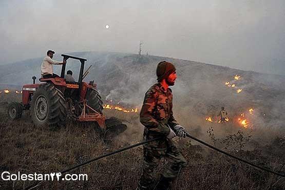 آتش سوزی جنگل گلستان