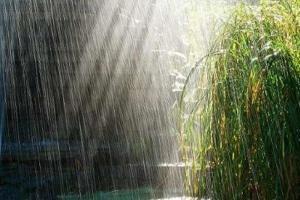 موج «باران» در راه ۱۰ استان ایران