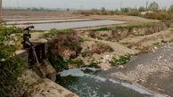 آبیاری مزارع گلستان با فاضلاب خام/ ۱۲۹ مورد سال گذشته اخطار گرفتند