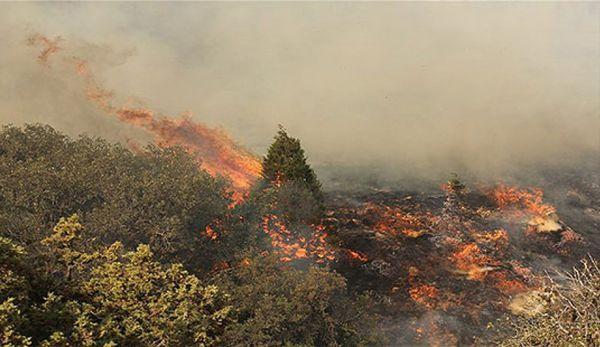 پرونده آتش سوزی جنگل نیلکوه گالیکش در دادسرا تشکیل شد