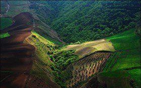 4619 هکتار از اراضی کشاورزی استان تعیین تکلیف شد