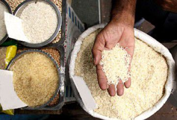 واردات برنج همچنان ممنوع است + جزئیات