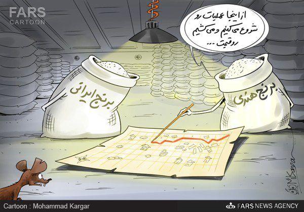 کاریکاتور گرانی برنج