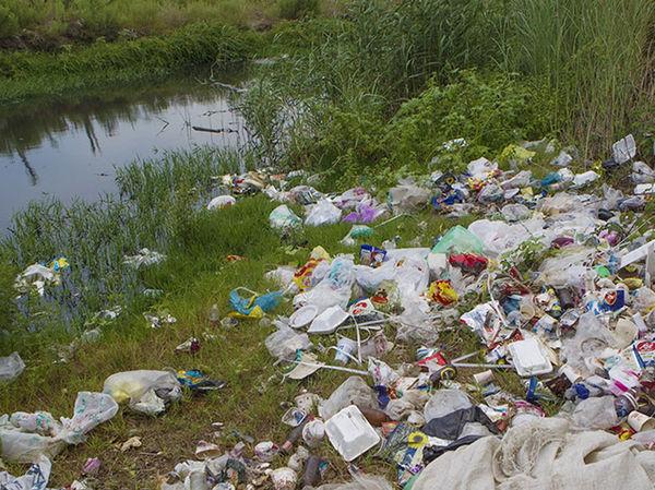 سیطره زباله بر سواحل خزر و جنگل های هیرکانی