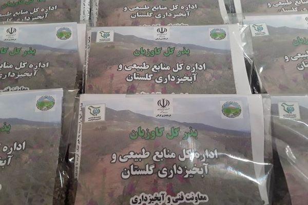 کشت گیاهان دارویی در ۱۲ روستای حاشیه جنگل گرگان آموزش داده شد